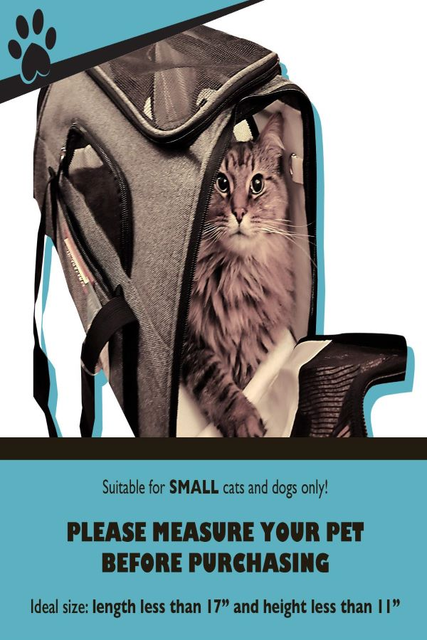 Pawfect-Pets-Premium-Soft-Sided-Cat-Travel Carrier-for-nervous-cat