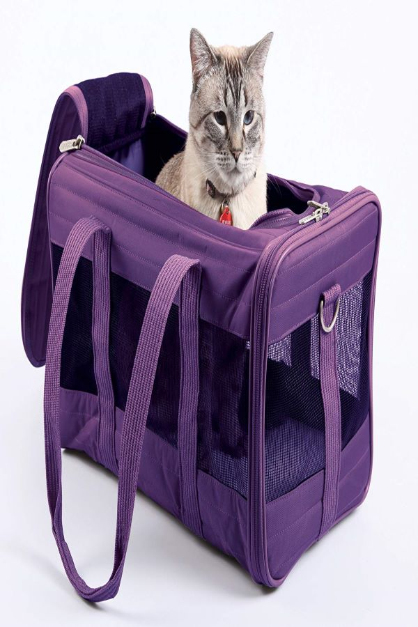 Sherpa-Travel-cat carrier -for-nervous-cat