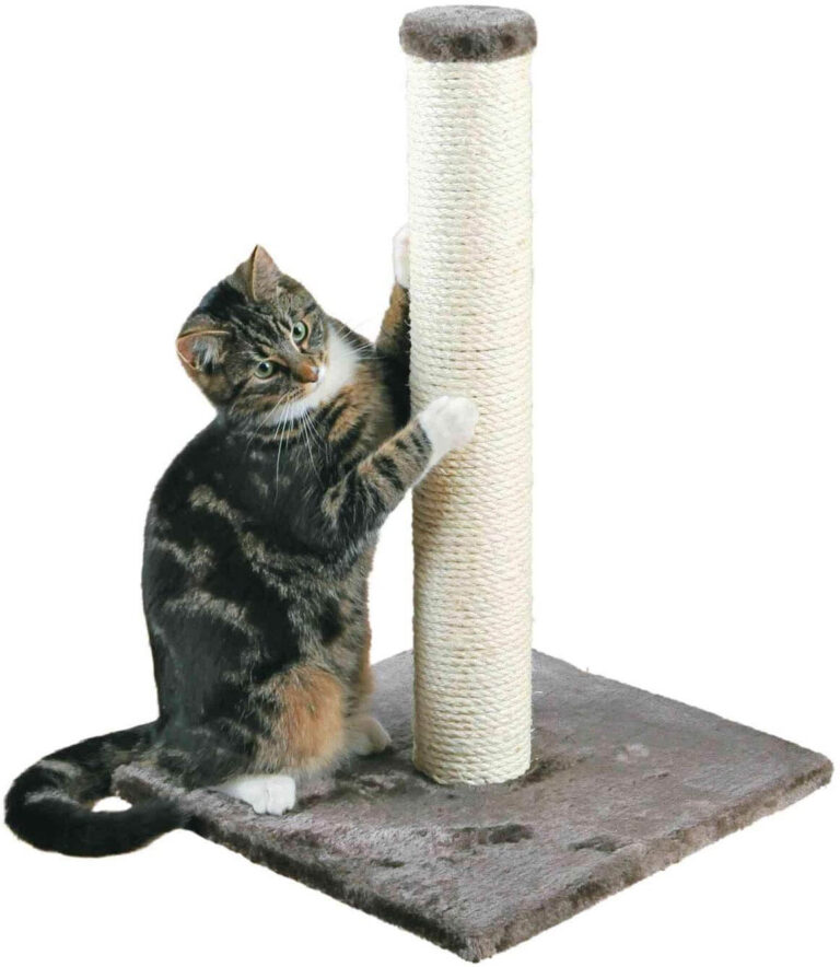 Sisal-Scratching-Posts-To-File-Nails-for-Young-and-Adult-Cats