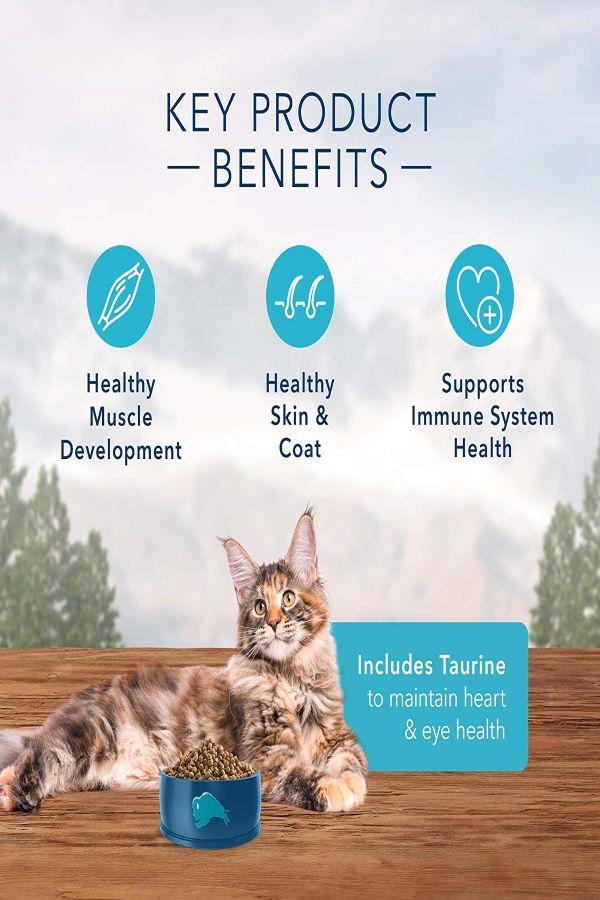 Blue-Buffalo-Wilderness-High-Protein-Best-Cat-Dry-Food