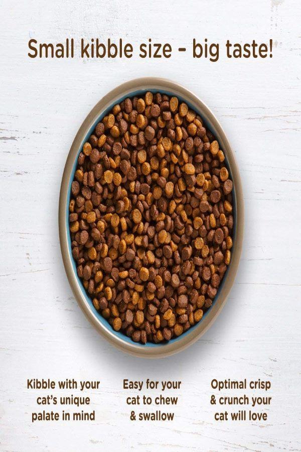 Rachael-Ray-Nutrish-Naturalbest-cat-dry-foods