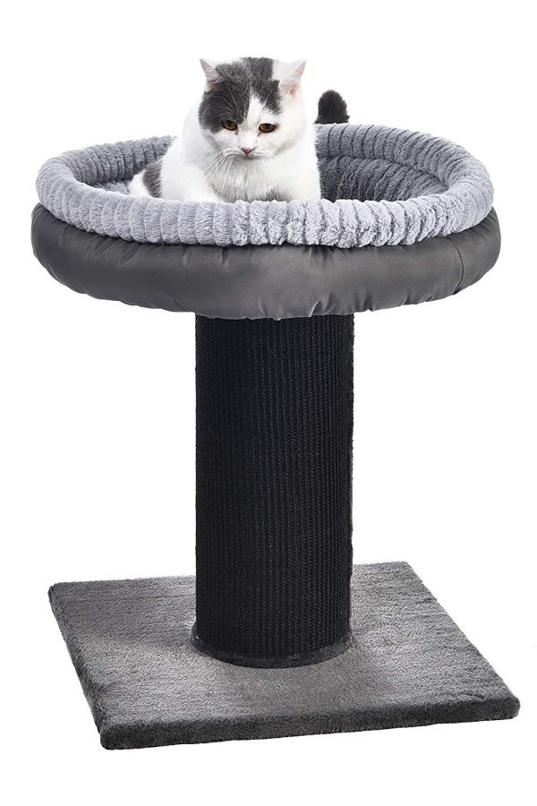 best-cat-scratching-post-to-file-nail