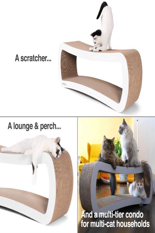 scratching lounge to file nails