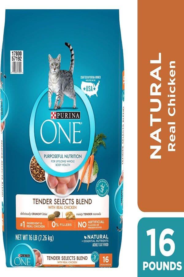 Purina-one-Dry-Cat-Foods
