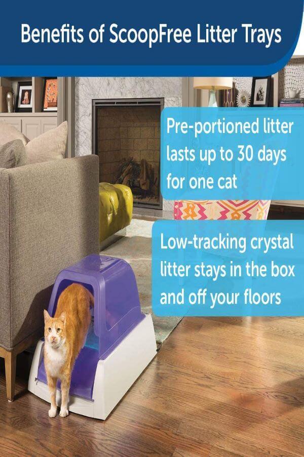 PetSafe ScoopFree Ultra Automatic Self Cleaning Hooded Cat Litter Box