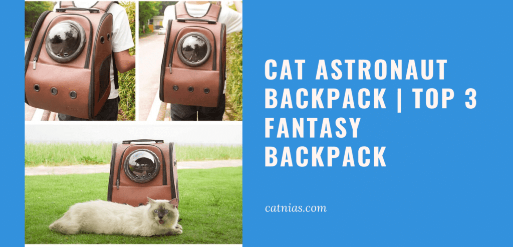 Cat Astronaut Backpack Top 3 Fantasy Backpack